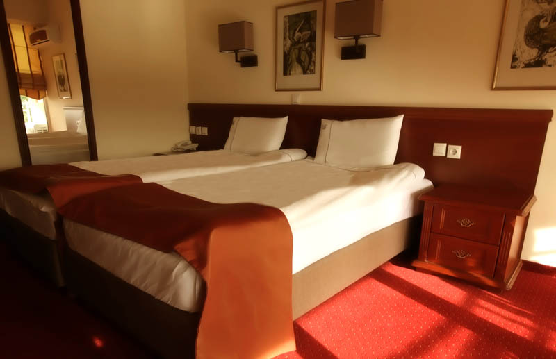 https://hotelbelvedere.com.mk/wp-content/uploads/2015/05/hotel_belvedere_ohrid_standard-2.jpg